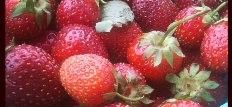 Farmers' Market Strawberries