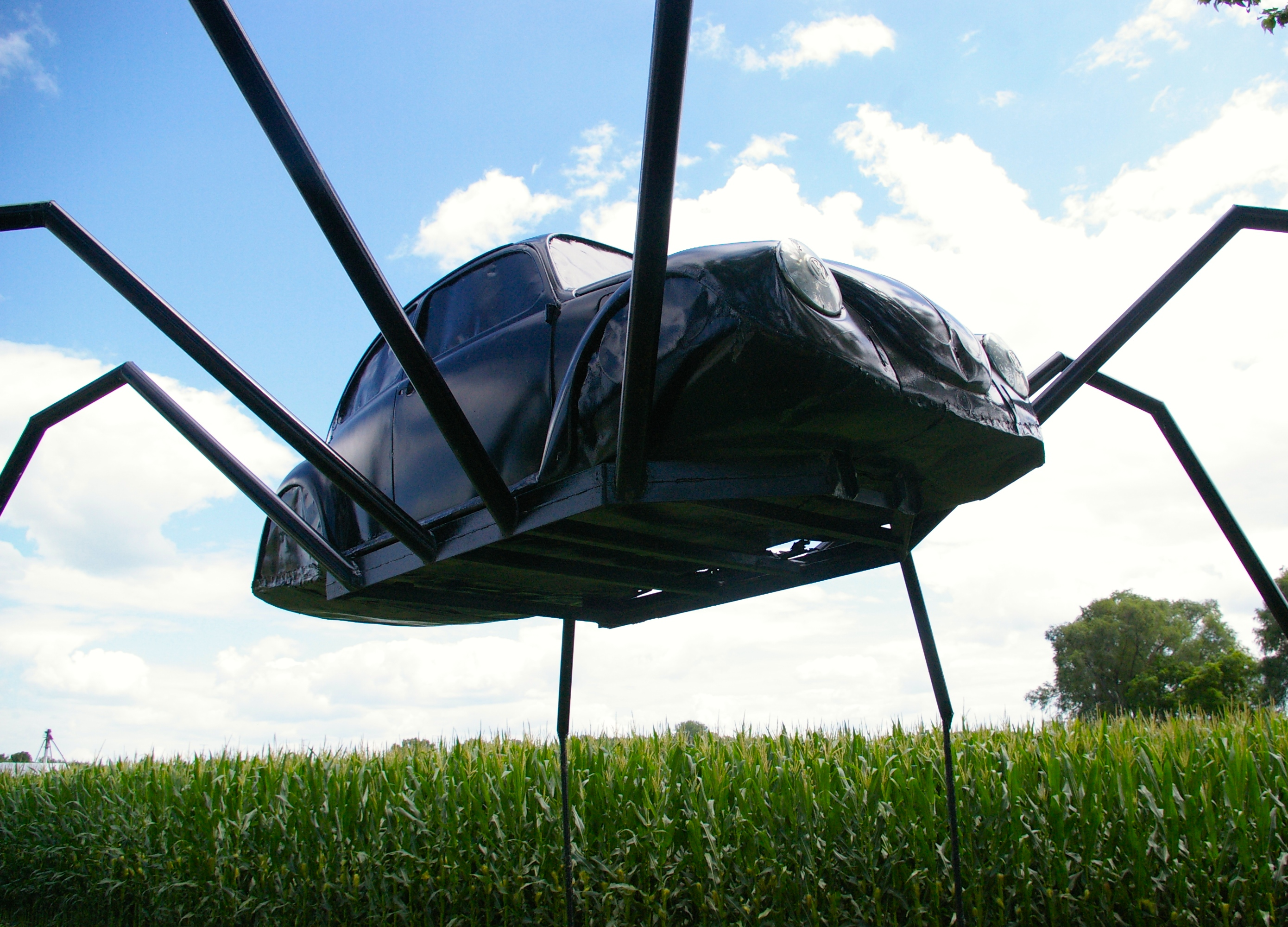 Volkswagen Beetle Spider