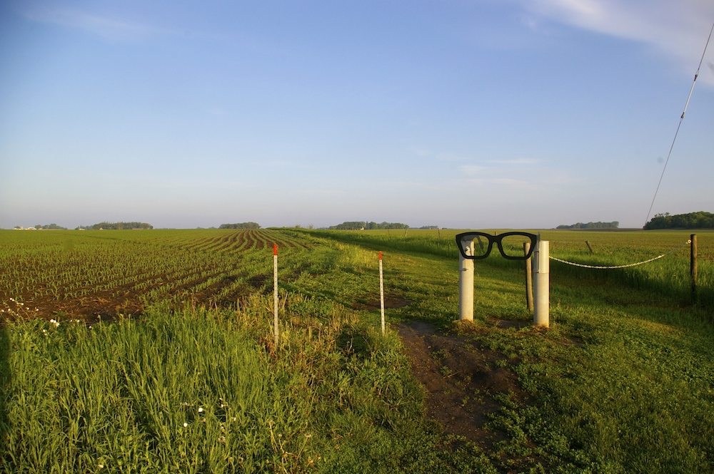 Giant glasses marking the Buddy Holly crash site in a field near Clear Lake, Iowa