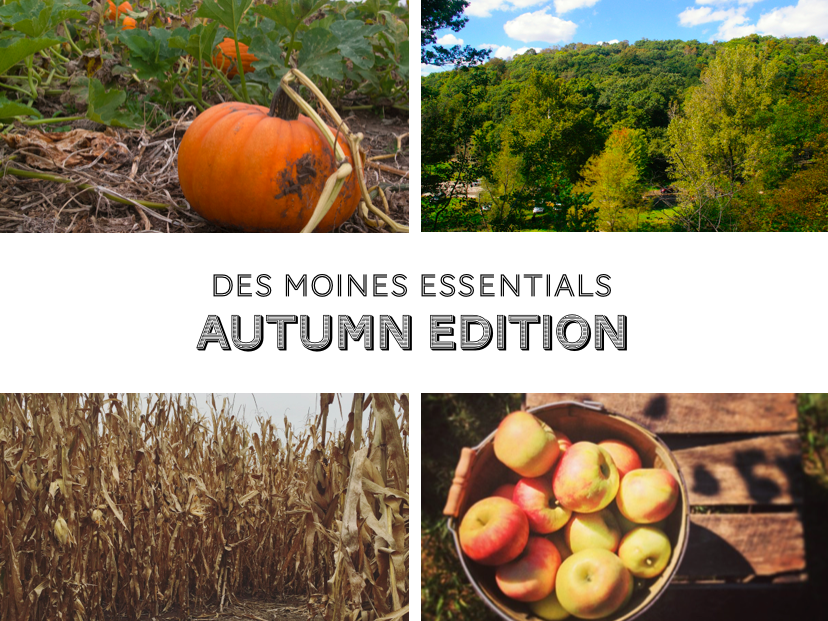 What are your favorite autumnal activities? Here are some of mine!