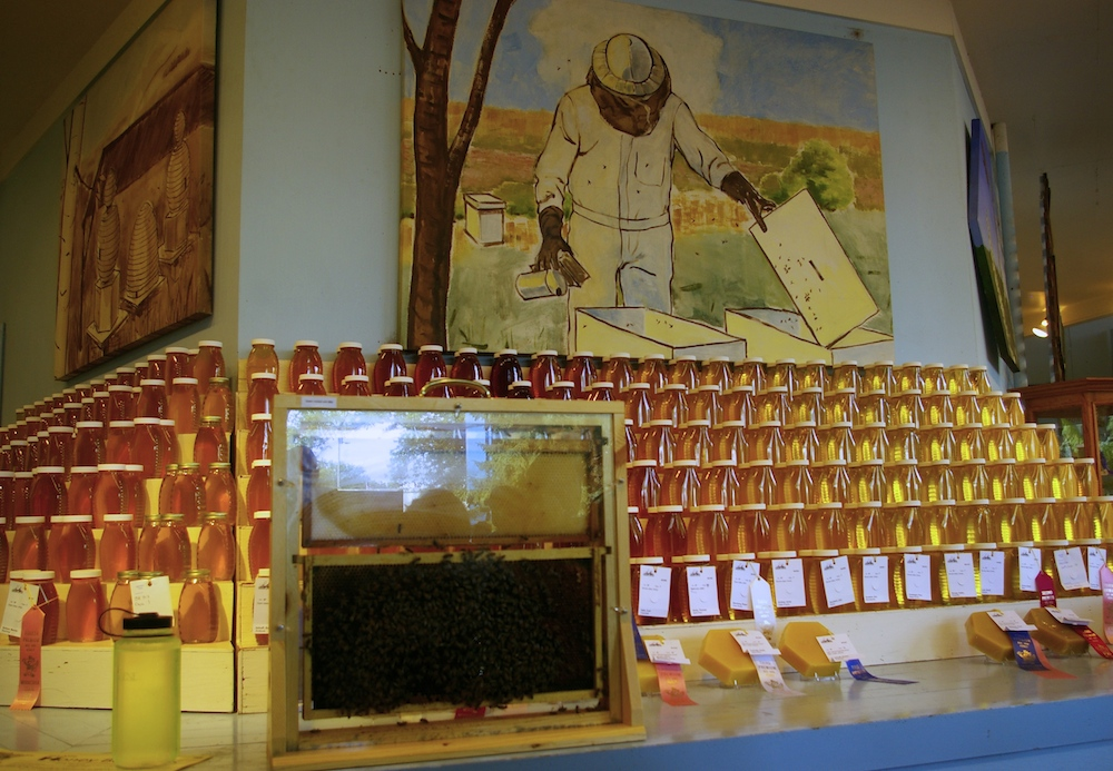 Honey display at the Minnesota State Fair in St. Paul, Minnesota