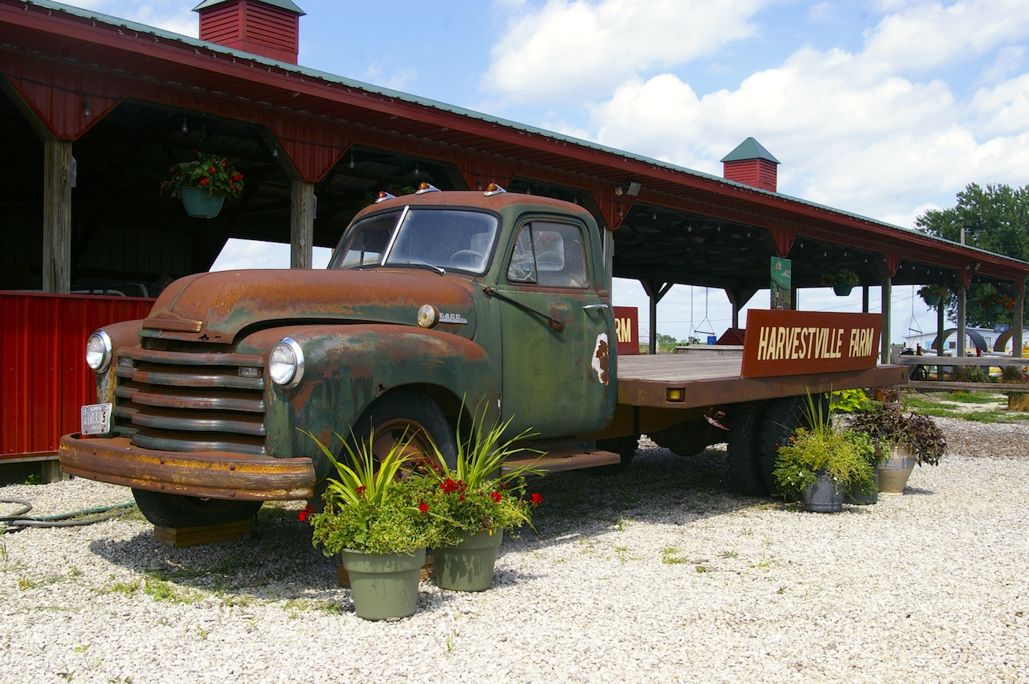 Vintage pickup truck at Harvestville Farms in Donnellson, Iowa
