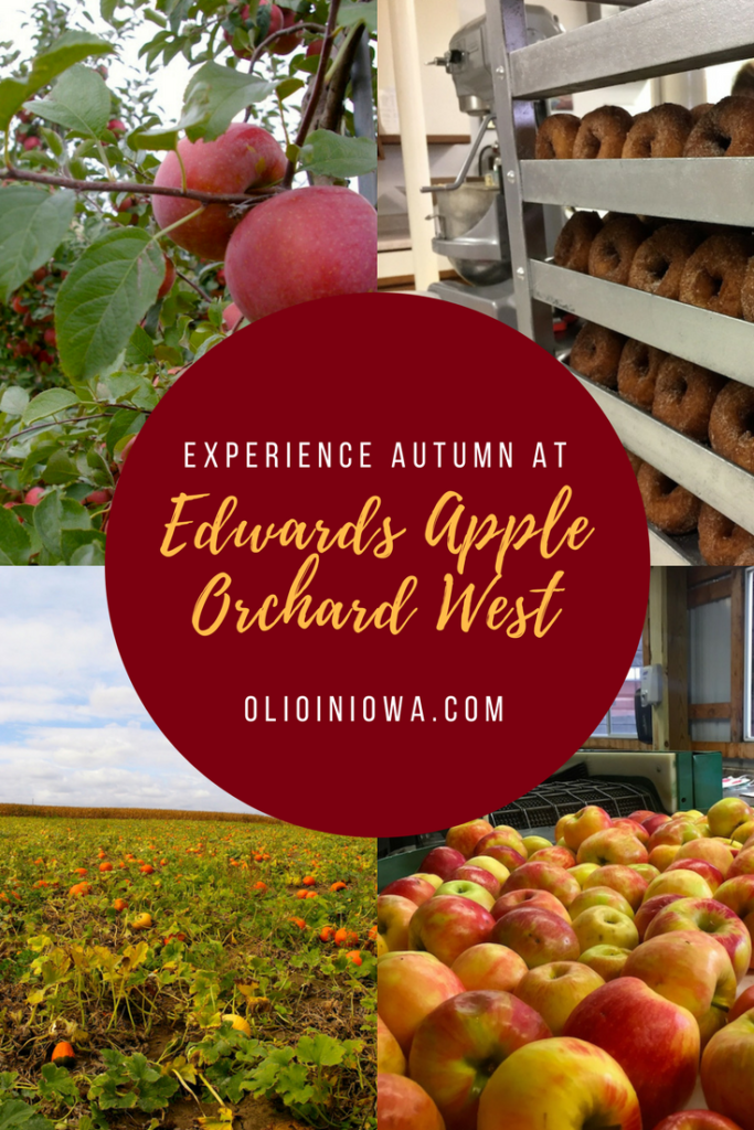 Enjoy all autumn has to offer at Edwards Apple Orchard West near Rockford, Illinois!