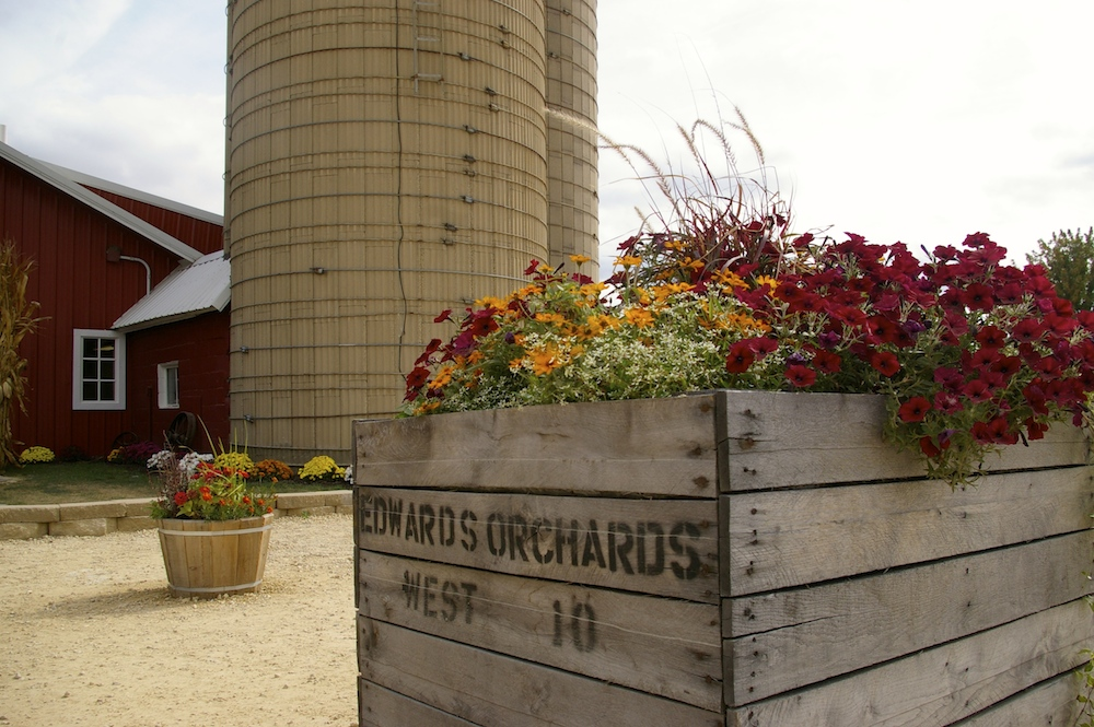 Crate of flowers at Edwards Apple Orchard West near Rockford, IL
