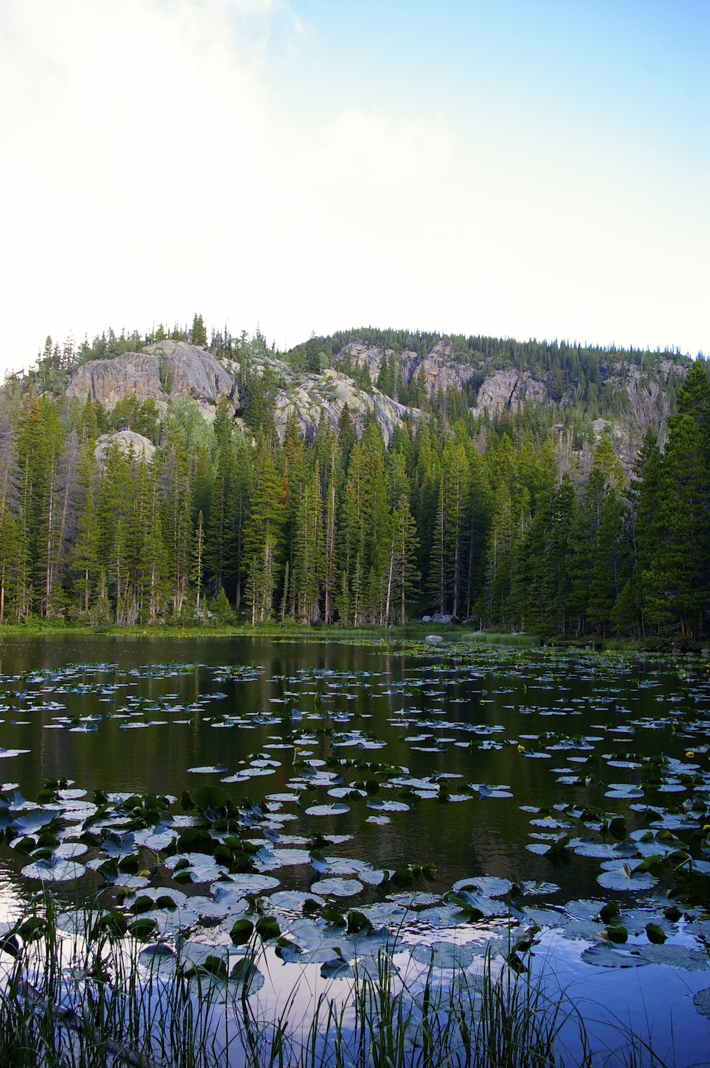 Nymph Lake in Rocky Mountain National Park in Estes Park, Colorado