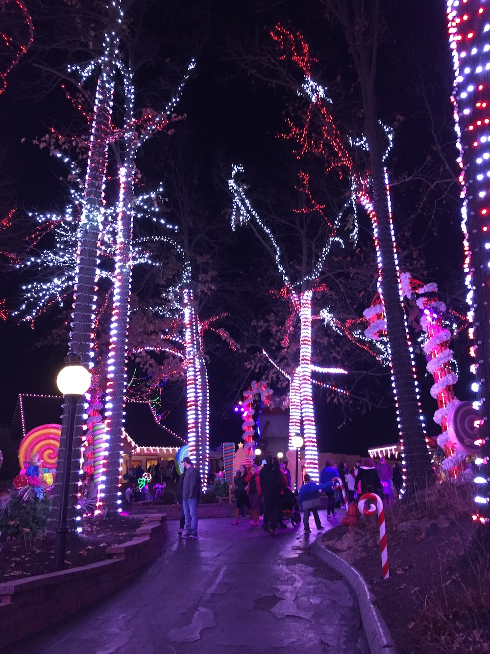 Candy cane lights on trees at Worlds of Fun's WinterFest in Kansas City, Missouri