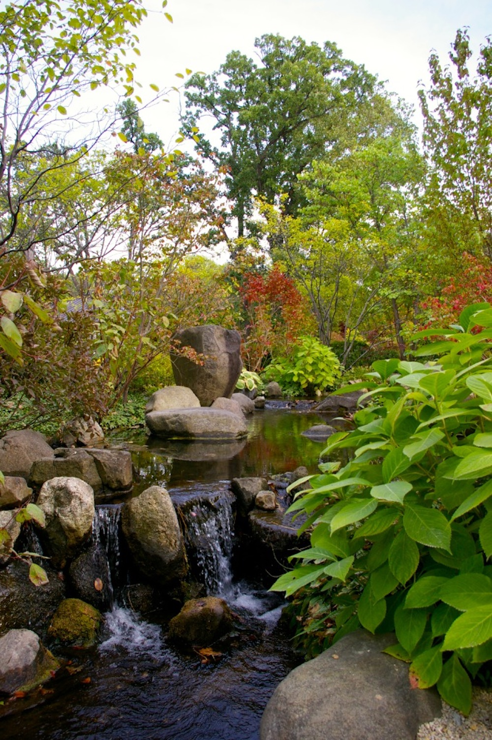 Find Your Zen At Rockford's Anderson Japanese Gardens