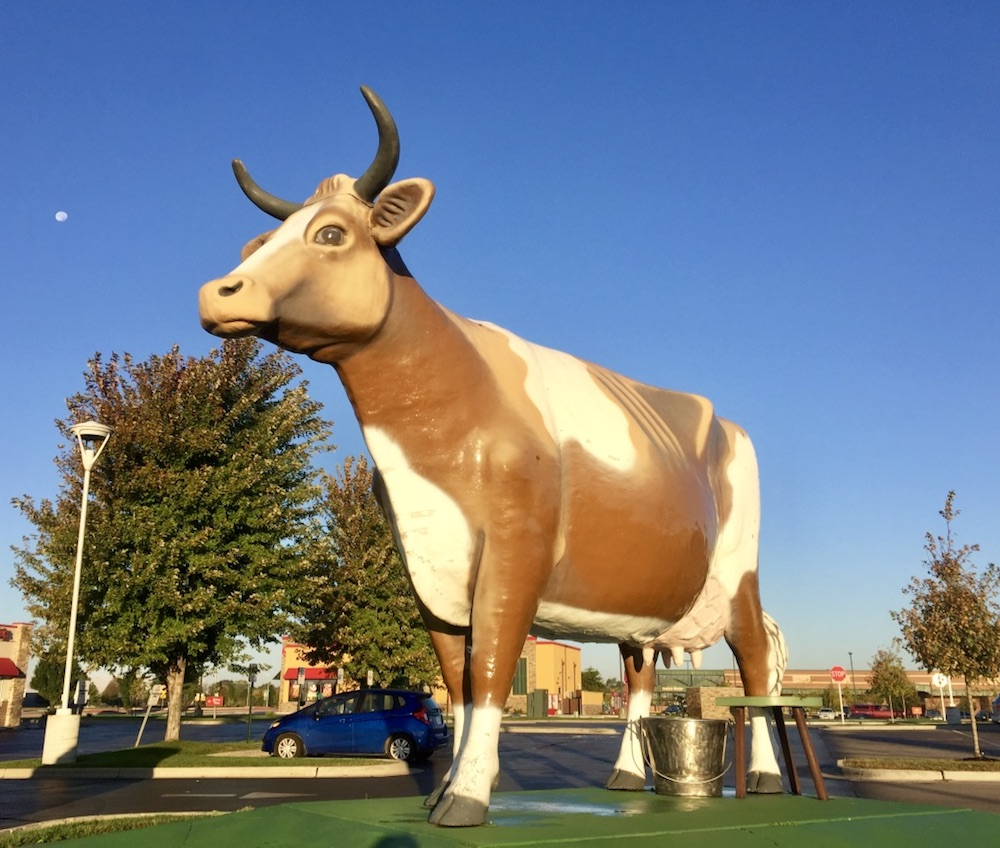 Large cow statue in a parking lot in Janesville, Wisconsin