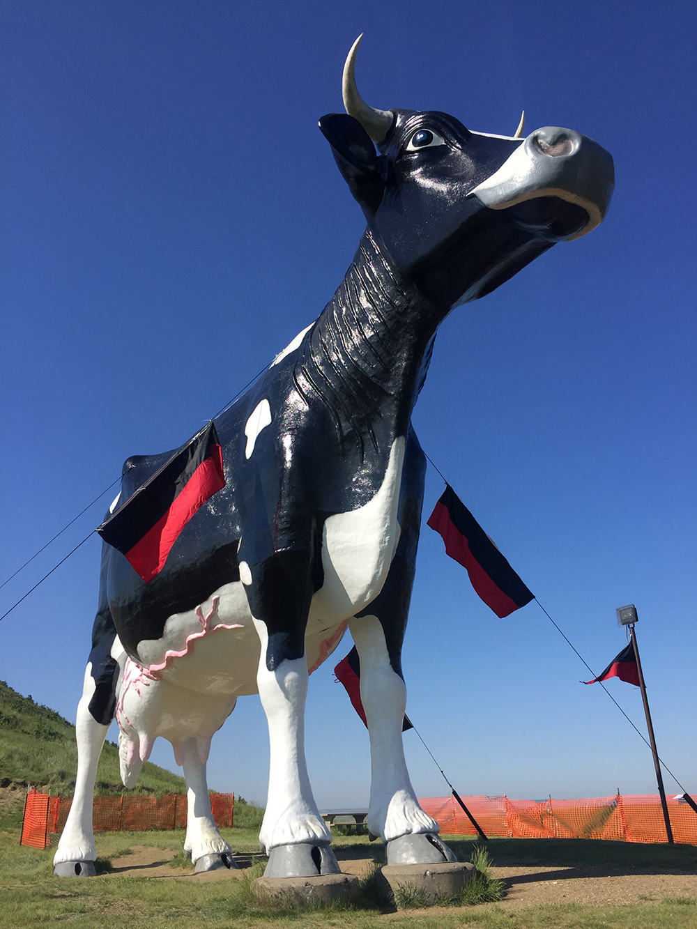 Giant black and white cow statue named Salem Sue, the world's largest Holstein cow, in New Salem, North Dakota