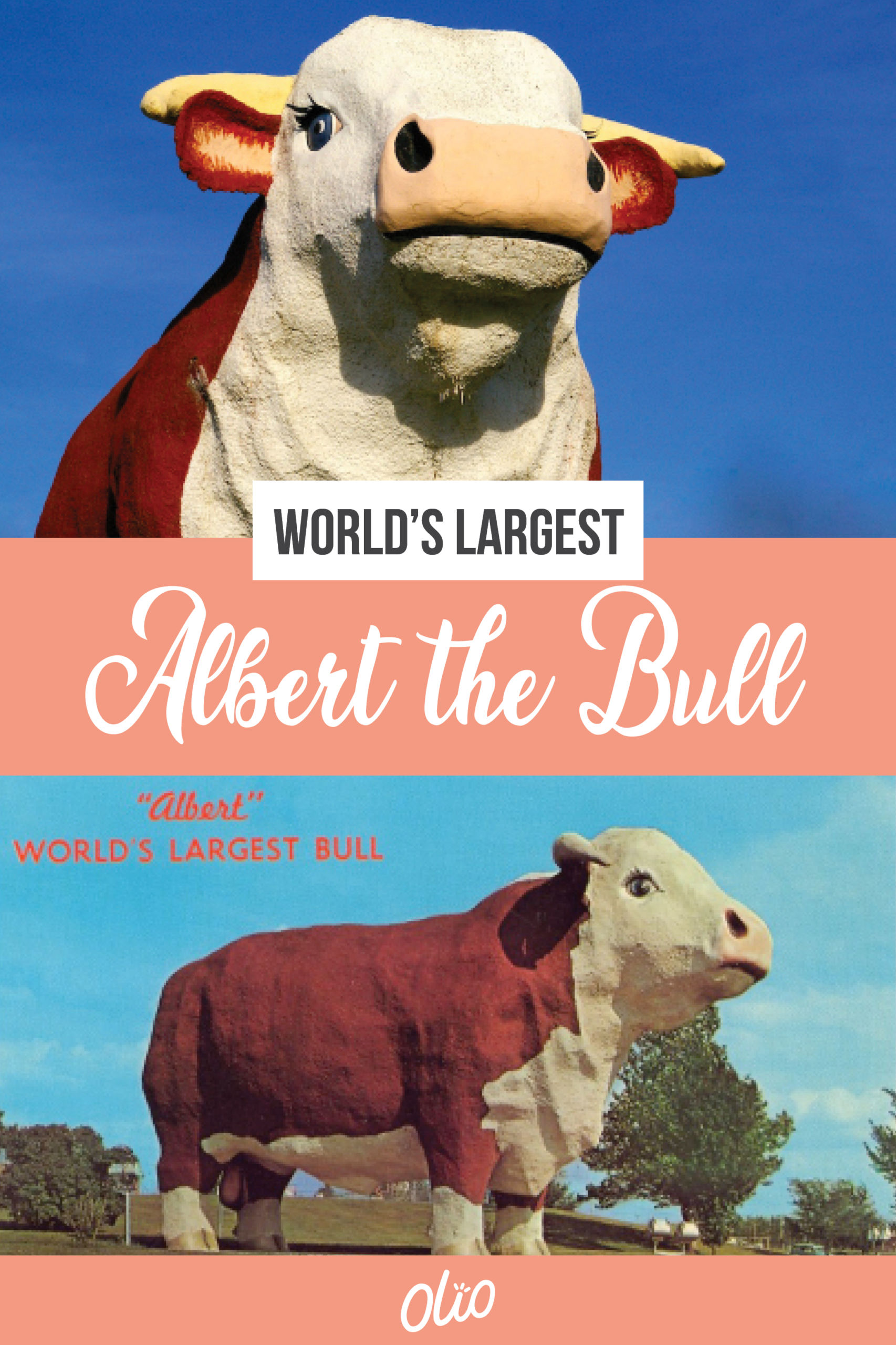 Looking for an offbeat Iowa attraction? Meet Albert the World's Largest Bull! A realistic Hereford replica, Albert calls Audubon, Iowa home. Towering 30 feet over the sprawling Iowa countryside, the concrete bull is a symbol not only of the area's cattle raising past but also of its hopes for future generations. #Iowa #WorldsLargest #RoadsideAttractions