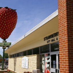 Sculpture of the World's Largest Strawberry outside of city hall in Strawberry Point, Iowa